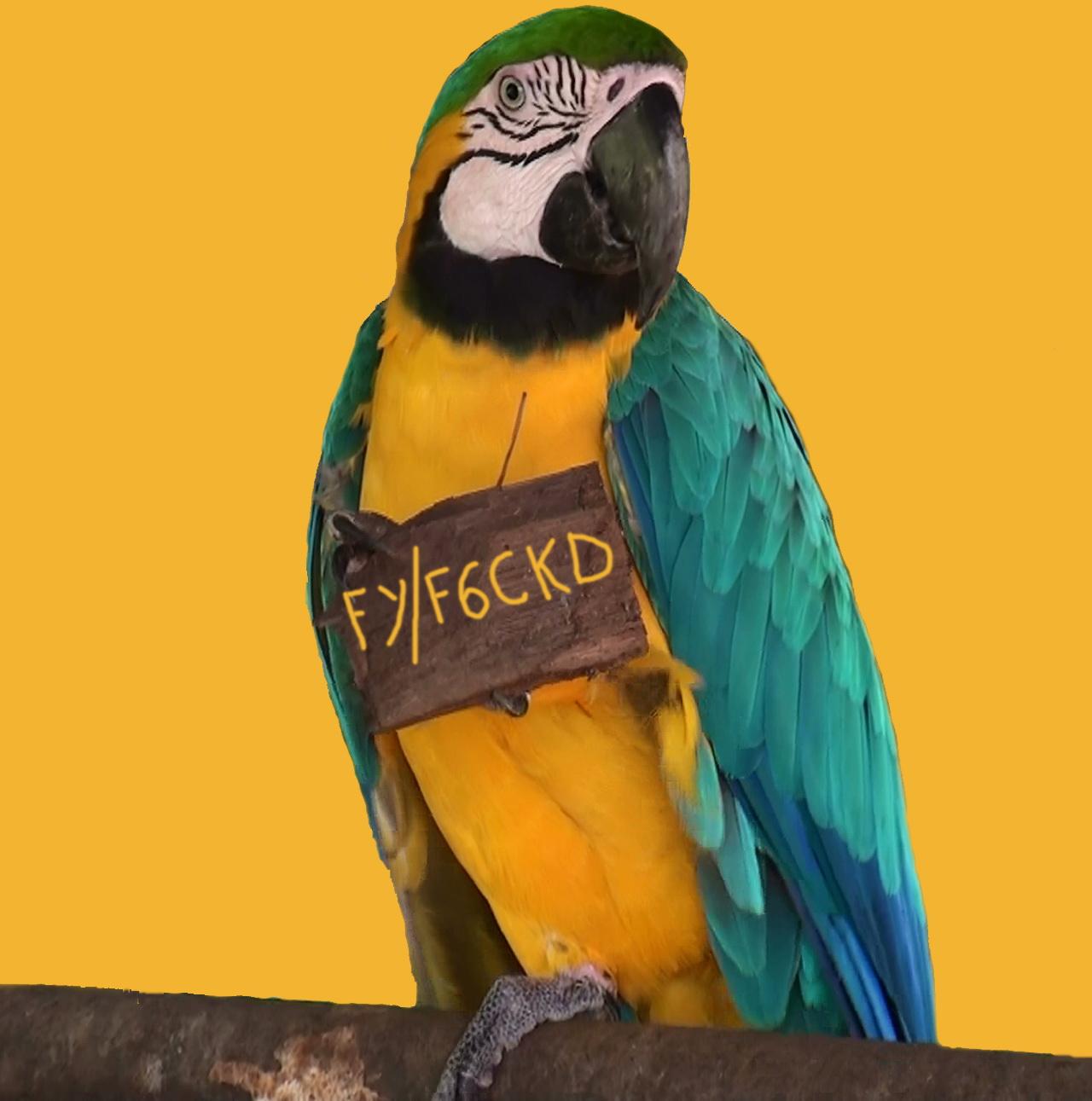 FY_F6CKD_12_2012